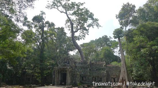 Ta Phrom, aka Tomb Raider Temple!